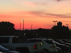 This is a photo of a sunrise taken over the tops of cars parked in a parking lot.
