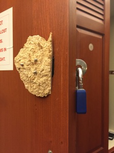 This is a photo of a gym locker that has been forced open, with the locker and particle board with screws still attached.